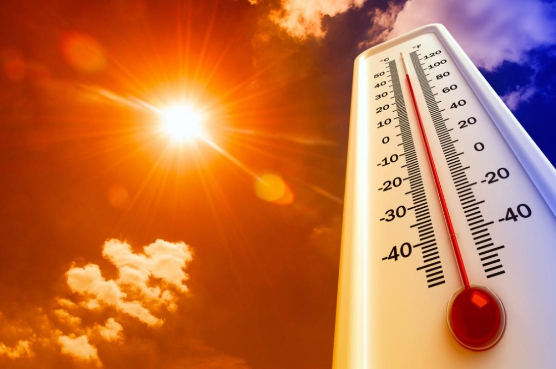 How To Deal With Heat Stress This Summer